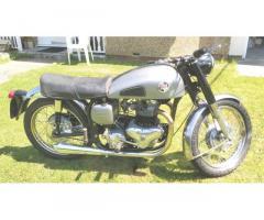 Dominator 500cc Wideline
